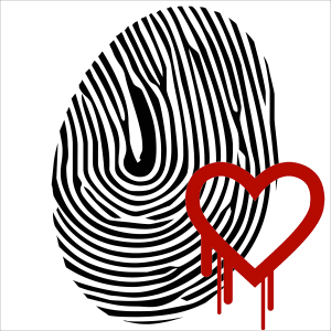 Heartbleed and Biometric Security